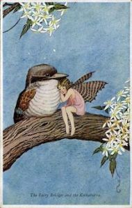 fairy and kookaburra
