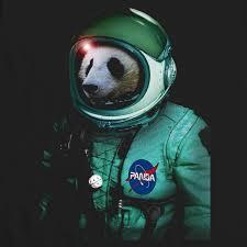 panda deviant art